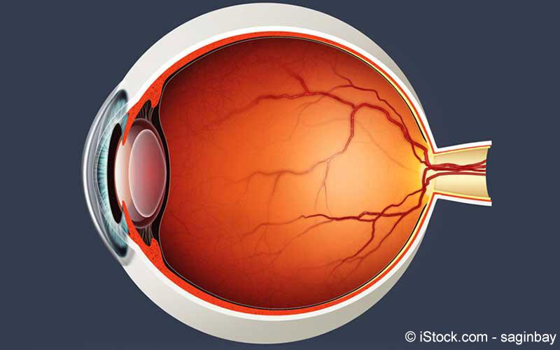 Retinopathie Auge