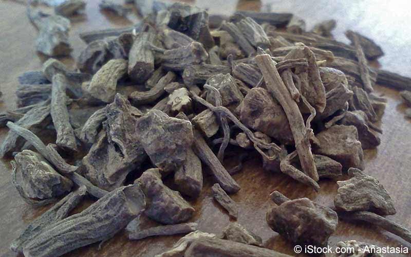 Baldrian (Valeriana officinalis)