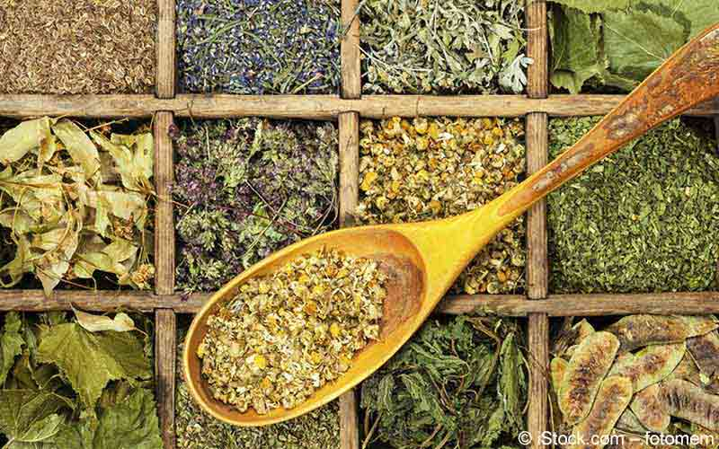Heilpflanzen und Heilkräuter