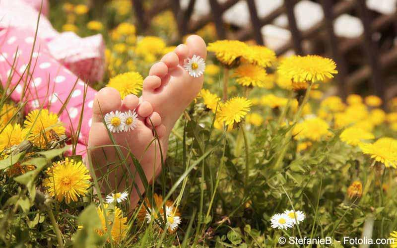 Entspannung zwischen Blumen